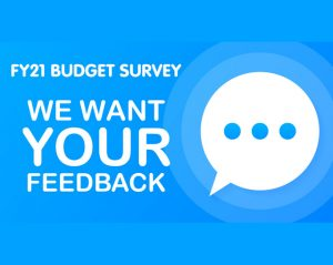 County budget survey