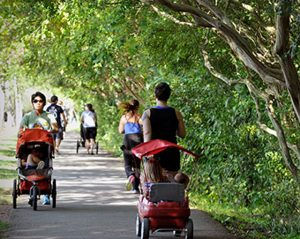 Freedom Park trail